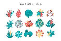 Jungle Life - Illustrations