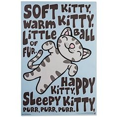 Big Bang Theory Soft Kitty Poster