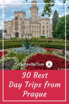 Click the pin to discover some of the best places to visit in the Czech Republic. Don't miss out, there are so many amazing things to do and see in the Czech Republic beyond Prague. Us Travel Destinations, Europe Travel Guide, France Travel, Budget Travel, Travel Guides, Day Trips From Prague, European Travel, Czech Republic, Cool Places To Visit