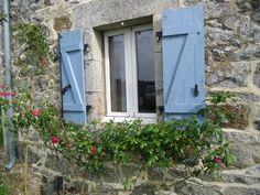 rambling rose, blue french shutters
