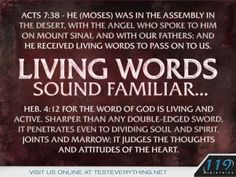"""Acts 7:38 """"Moses was in the assembly in the desert, with the angel who spoke to him on Mount Sinai, and with our fathers; and he received living words to pass on to us."""" Living words sound familiar… Heb. 4:12 """"For the word of God is living and active. Sharper than any double-edged sword. It penetrates even to dividing soul and spirit. Joints and marrow; it judges the thoughts and attitudes of the heart."""""""