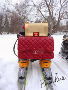 544 Best Chanel, Chanel, Only Chanel images   Chanel purse, Chanel ... bdd551aa52