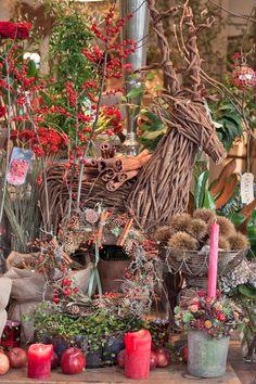 Inside florist Zita Elze's beautiful shop in Kew – Christmas 2013