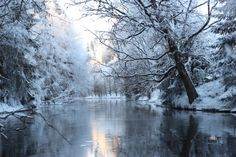 Suomen Luonto - beautiful picture Snowy Pictures, Forest Painting, Winter Scenery, Stars At Night, Winter Beauty, Winter Wonder, Landscape Pictures, Outdoor Life, The Fresh