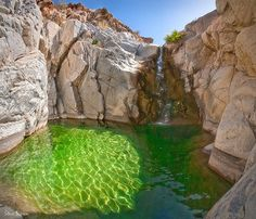 Guadalupe Canyon Baja California Emerald Pool  Mineral water from a mountain spring near Guadalupe Peak pours in the emerald pool cold spring in this secluded desert Canyon.
