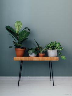 home & decor Archives - Page 3 of 35 - Viena K Scandinavian Decor, Plant Decor, Decor, Apartment Accessories, Decor Inspiration, Decoration And Furniture, Colorful Interiors, Design Your Home, Home Decor