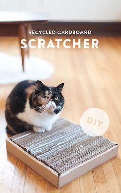 DIY Cardboard cat scratcher. Watch the video here: http://youtu.be/2R-ifP0tnSI