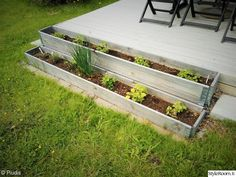 puutarha,yrtit,piha,terassi,kasvimaa