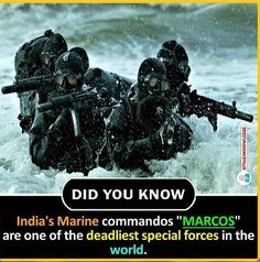 What are some of the interesting facts about India? Some Amazing Facts, True Interesting Facts, Amazing Science Facts, Interesting Facts About World, Intresting Facts, Unbelievable Facts, Wow Facts, Real Facts, Wtf Fun Facts