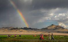 steppa-mongola