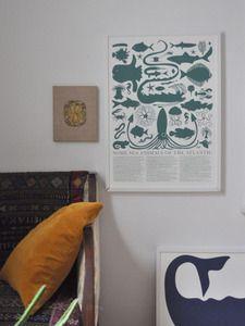 Image of Atlantic Sea Animals Print