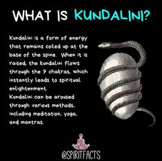 Kundalini is a very important topic that applies to ALL spiritual paths. All pat… Kundalini is a very important topic that applies to ALL spiritual paths. All pat…,Spiritual Kundalini is a very important topic. Spiritual Enlightenment, Spiritual Path, Spiritual Growth, Spiritual Awakening, Spiritual Quotes, Spiritual Reality, Healing Quotes, Kundalini Yoga, Chakra Meditation