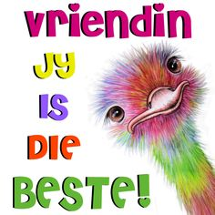 Vriendin jy is die beste! Friend Friendship, Friendship Quotes, Cute Quotes, Girl Quotes, Special Friend Quotes, Good Morning Vietnam, Afrikaanse Quotes, Goeie Nag, Goeie More
