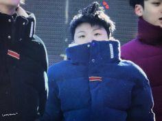 happy new year~ Seungkwan, Wonwoo, Jeonghan, Seventeen Memes, Mingyu Seventeen, Vernon Chwe, Fandom Kpop, Choi Hansol, Lee Jihoon