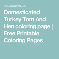 Domesticated Turkey Tom And Hen coloring page | Free Printable Coloring Pages  sc 1 st  Pinterest & Circus Tent | Printable Templates u0026 Coloring Pages | FirstPalette ...