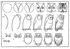 draw some owls vintage printable