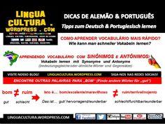 Turbine seu Alemão & Português com a Técnica dos Sinônimos e Antônimos (Sprachen schnell lernen mit sinnverwandtes Wort und Gegensätze: Deutsch+Portugiesisch), DaF-PLE