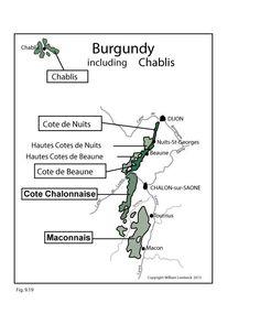 France: Burgundy & Chablis #Wine Regions   by @wine_educators
