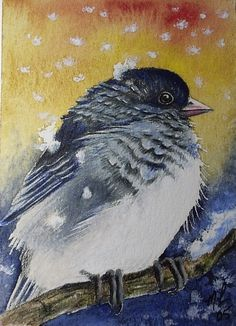 Winter Junco Bird Art by Melody Lea Lamb ACEO by MelodyLeaLamb (Art & Collectibles, Prints, Giclee, giclee, small art, charming, melody lea lamb, bird, bird art, cute, melody lamb, winter bird, backyard bird, aceo, colorful gift, junco)