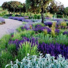 Jardín en Madrid.