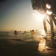 #tbt Afternoon snorkel at Heron Island. Miss this. #heronisland #heronislandresearchstation #marineconservation #studentlife #snorkel #dive #ocean #greatbarrierreef by daniellateixeira__ http://ift.tt/1UokkV2