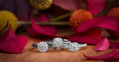 The perfect trio of classically crafted engagement rings from the Naledi bridal Collection.