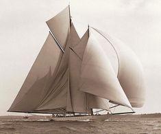 wave-sails: animalignea: WESTWARD, 1910. in the Solent