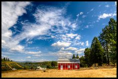 apple hill california - Google Search
