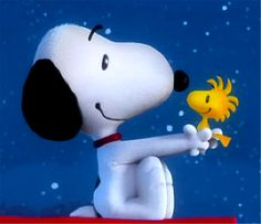 Peanuts cartoon, peanuts snoopy, woodstock charlie brown, snoopy and woodst Woodstock Charlie Brown, Charlie Brown And Snoopy, Snoopy And Woodstock, Peanuts Movie, Peanuts Cartoon, Peanuts Snoopy, Snoopy Images, Snoopy Pictures, 70s Cartoons