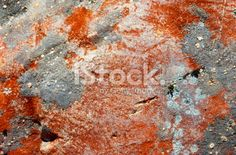 Lichen Royalty Free Stock Photo Abstract Photos, Image Now, Lakes, National Parks, Royalty Free Stock Photos, Orange, Photography, Photograph, Fotografie