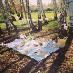 whimsy picnic