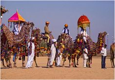 The flashy colors of Rajasthan will hike your spirits. The desert festival is a three day fair held in Jaisalmer and flaunts the cultural exuberance of the state in which the country takes pride. People perform folk dances wearing the colorful traditional attires as the taps of Rajasthani folk music plays in the background.