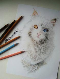 Cat by Natsumi-Aiko on DeviantArt