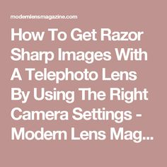 How To Get Razor Sharp Images With A Telephoto Lens By Using The Right Camera Settings - Modern Lens Magazine