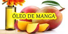 Óleo de Manga ( Um super óleo para cabelos secos)