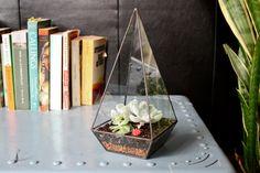 Obelisco Terrario // hecho a mano con vidrio reciclado // plantador geométrica para cactus - suculentas - cristales