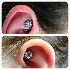 giant gem flowers sit on the top of rook piercings- so rad!  #anatometal, #rookpiercing, #piercing