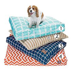 Give your pooch a long-lasting and cozy spot to rest with these good-looking indoor/outdoor beds.  1. Molly Mutt Aqua Nautical Rope Indoor/Outdoor Dog Bed Cover, from $29  2. Harry Barker Vintage Stripe Envelope Dog Bed in Tan, from $110  3. Jax and Bones Harbor Outdoor Pillow Bed, from $158  4. Majestic Pet Majestic Rectangle Pet Bed in Burnt Orange Zig Zag, from $115
