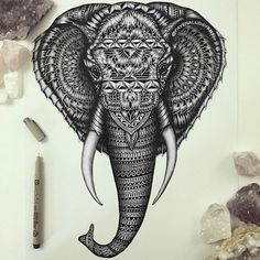 Amazing_Detailed_Animal_Doodles_Created_by_Artist_Faye_Halliday_2015_08