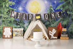 Wild one cake smash photography set up