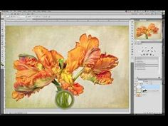 Installing and Using Photoshop and Photoshop Elements Brushes | French Kiss Collections, photography and design resources and tutorials