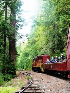 Ride forty miles of railroad through majestic redwood forests, scenic mountain meadows, and over thirty trestles bridging the pristine mountain waters of Northern California.