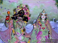 Sri Sri Radha Shyamsundar Close up Wallpaper (011)   Download Wallpaper: http://wallpapers.iskcondesiretree.com/sri-sri-radha-shyamsundar-close-up-iskcon-hungary-wallpaper-011/  Subscribe to Hare Krishna Wallpapers: http://harekrishnawallpapers.com/subscribe/  #Krishna, #RadhaKrishna, #RadhaShyamsundar, #Shyamsundar, #SrimatiRadharani