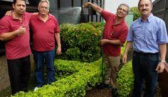 Síndico cria sistema para reutilizar água de chuva