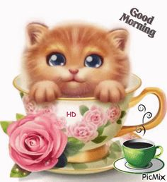 Pop Up Kitty Good Morning Animation good morning morning quotes good morning quotes good morning gifs good morning images morning images good morning pictures good morning animation Good Morning Wishes Gif, Good Morning Cat, Good Morning Sister, Morning Morning, Happy Morning, Good Morning Picture, Good Morning Messages, Good Morning Greetings, Morning Pictures
