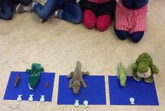 krokodil kringactiviteit