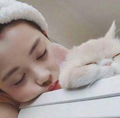 20 Wholesome Cat Posts Hopefully Will Brighten Up Your Day monday, September 23 Ulzzang Korean Girl, Cute Korean Girl, Asian Girl, Korean Aesthetic, Aesthetic Girl, Girl Korea, Style Japonais, Uzzlang Girl, Sulli