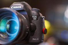 Our trusty combo Canon 5d Mark III  Sigma 50mm 1.4 Tag a creative human #camera #gear #canon #sigma #lens #canoneos #canonphotography #canon5dmarkiii #5dmarkiii #cameras #bokehlicious #photographyislife