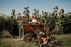 Come a little bit closer... HARVEST MOON // elopement  . From an idea of community with @albertaweddingsocial vendors came this stunner of a day! Sneak peeks out today!! . . Vendor team: Photography @capturedinamberphotography Planning and Styling @melissaalisonevents Rentals and Styling @orangetrunk Venue @the.gathered Floral Design @floral.and.field Caterer @foodworksyyc  Cake @lemonberrypastries  Calligraphy @mountaingrovestudio  Stationary @createlove.design Cinematography @aliststudio… Love Design, Floral Design, Tea Trolley, Late Summer Weddings, Harvest Moon, Cake Table, Event Photography, Orange, Wedding Designs