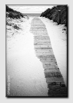 Curracloe Boardwalk by Padraig Grant Wexford Ireland, Emerald City, Places To See, Gem, Irish, Things To Do, Most Beautiful, Country Roads, Paintings